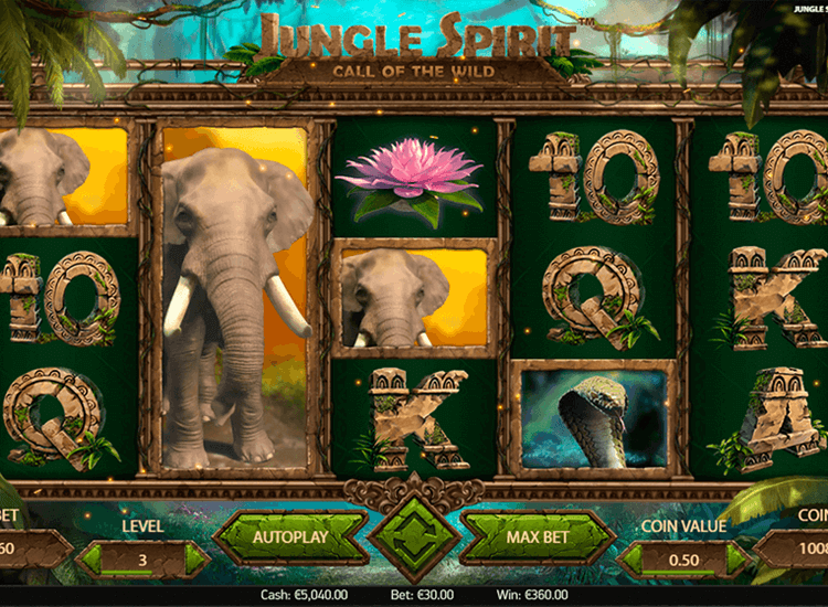 jungle spirit symboler og hjul